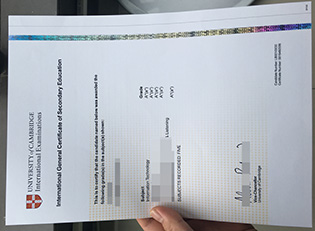 fake IGCSE certificate from Universi