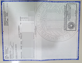 UCLA certificate of graduation, buy