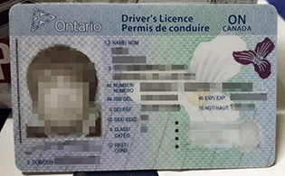 where to buy fake Canadian Driver Li