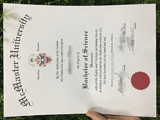 a fake degree from McMaster Universi