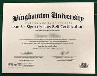 Binghamton University Six Sigma Fake
