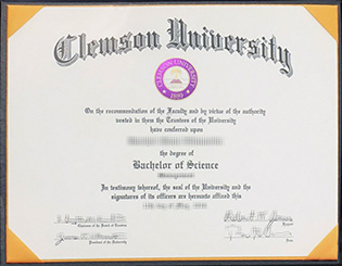 5 Ways of Clemson University fake di
