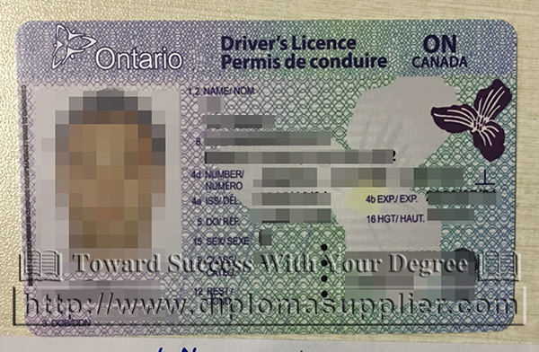 Canadian Driver Licence, Ontario Driver Licence, fake card
